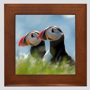 Puffin Pair 7.355x9.45 Framed Tile