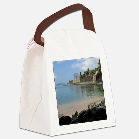 sanjuan_path_TC Canvas Lunch Bag
