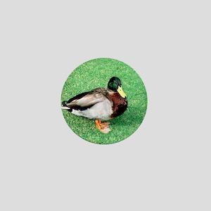 Duck Note Card Mini Button