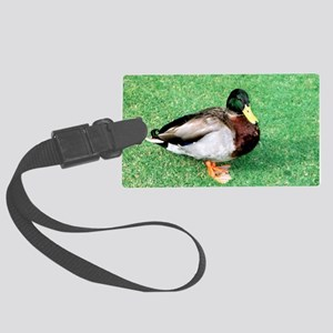Duck Note Card Large Luggage Tag