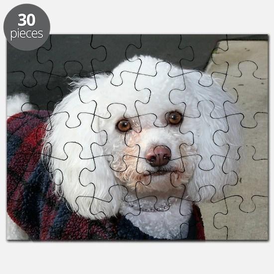 12-26 021 Puzzle