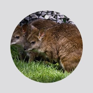 (2) Wallabies Round Ornament