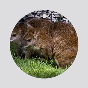 (4) Wallabies Round Ornament