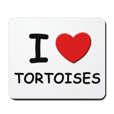 I love tortoises Mousepad
