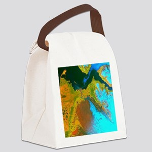 malaspinaGreetingCard Canvas Lunch Bag