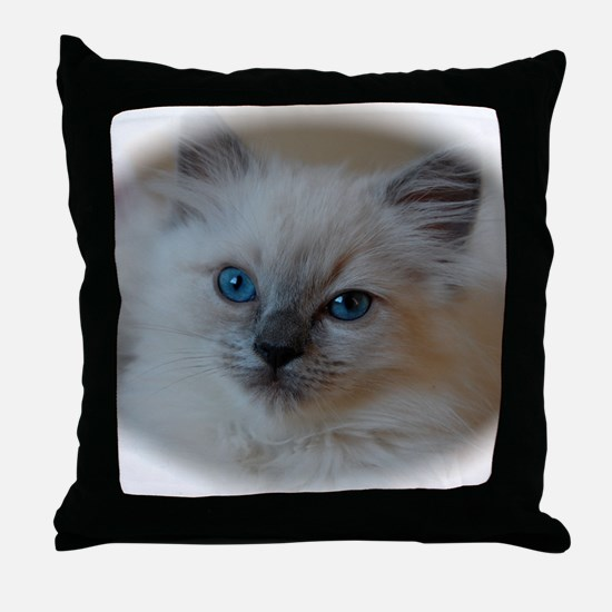 DSC_0479 Throw Pillow