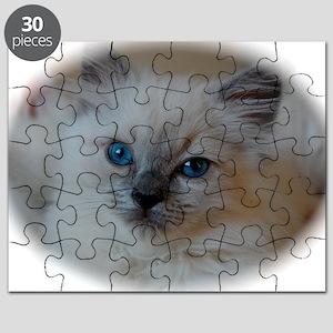 DSC_0479 Puzzle