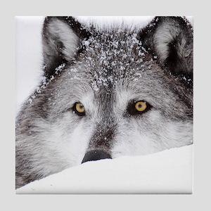 wolf ms Tile Coaster