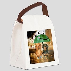 tig lil rain16x16 Canvas Lunch Bag