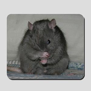 Baloo Mousepad