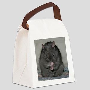 Baloo Canvas Lunch Bag