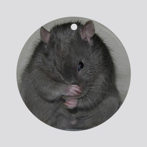 Baloo Round Ornament