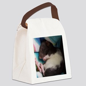 Mitsy Canvas Lunch Bag