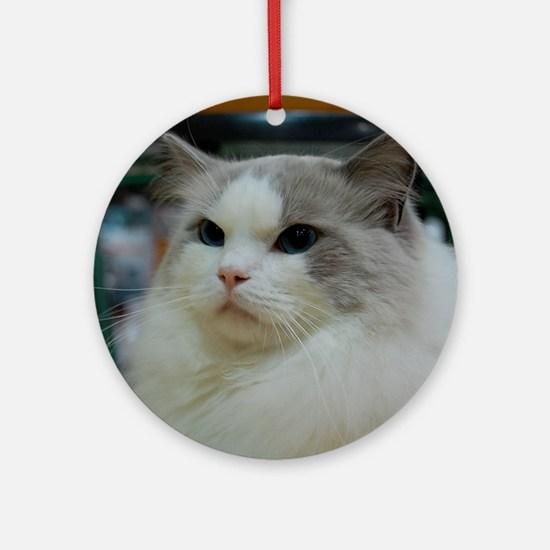 DSC_0212_2 Round Ornament