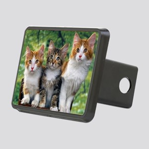 Tthree_kittens 16x16 Rectangular Hitch Cover