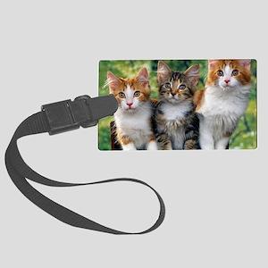 Tthree_kittens 16x16 Large Luggage Tag
