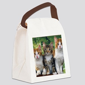 Tthree_kittens 16x16 Canvas Lunch Bag
