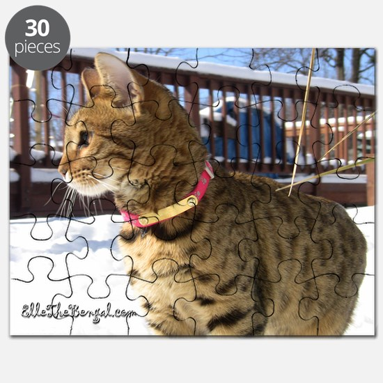 Calendar-01 Puzzle