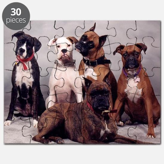 five boxers16x16 Puzzle