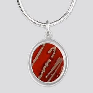Bacteria are creatures too w  Silver Oval Necklace