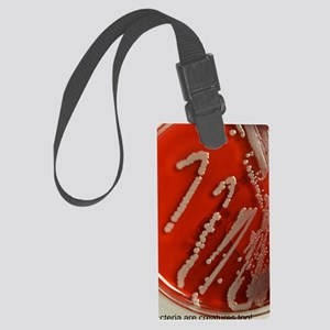 Bacteria are creatures too w 150 Large Luggage Tag