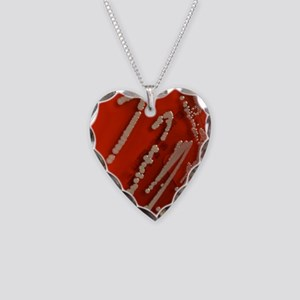 Bacteria are creatures too w  Necklace Heart Charm