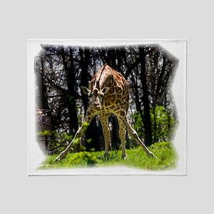 (16) Giraffe bowing Throw Blanket