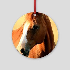 horse,1 Portrait Round Ornament