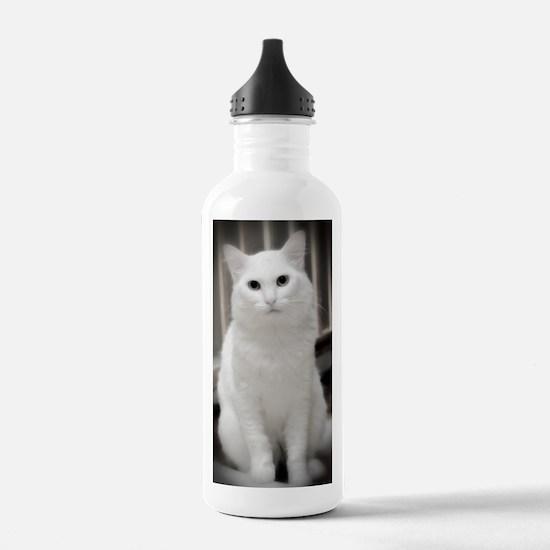 DSC_3989 B Water Bottle
