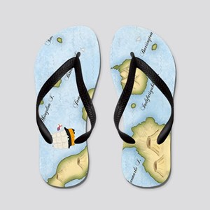galapagos Journal Flip Flops