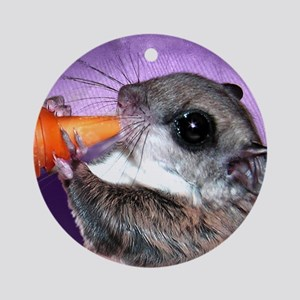 Baby Flying Squirrel Ornament (Round)