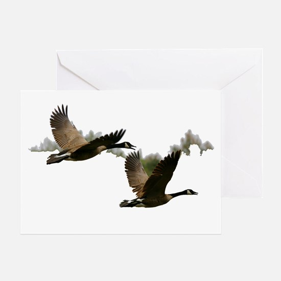 goose 1 Greeting Card