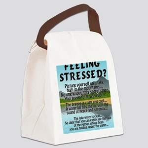 stressed-lake Canvas Lunch Bag