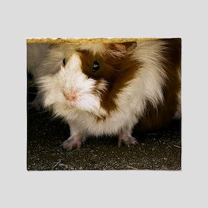 (2) Guinea Pig    9280 Throw Blanket
