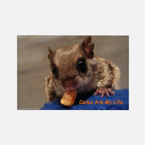 Carbs Flying Squirrel Rectangle Magnet