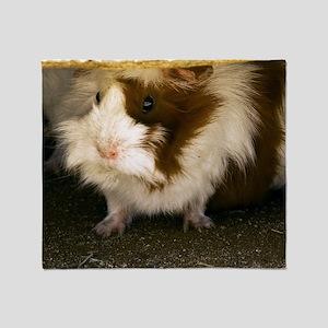 (3) Guinea Pig    9280 Throw Blanket