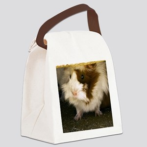 (4) Guinea Pig    9280  Canvas Lunch Bag