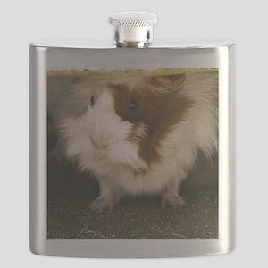 (4) Guinea Pig    9280  Flask
