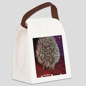 No Attitude Problem Canvas Lunch Bag