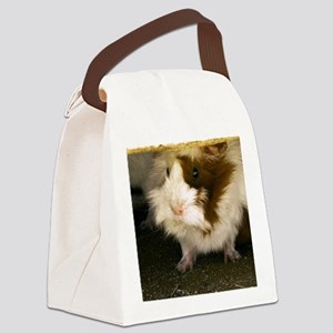 (15) Guinea Pig    9280 Canvas Lunch Bag