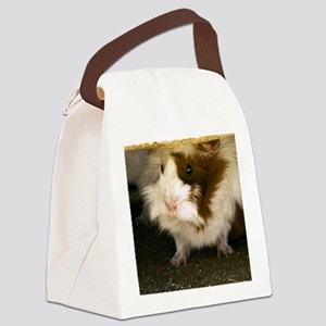 (15s) Guinea Pig    9280 Canvas Lunch Bag