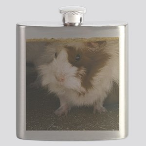 (15s) Guinea Pig    9280 Flask