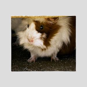 (14) Guinea Pig    9280 Throw Blanket