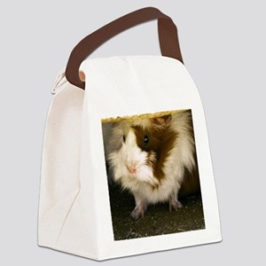 (14) Guinea Pig    9280 Canvas Lunch Bag