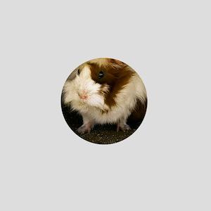 (14) Guinea Pig    9280 Mini Button