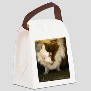 (12) Guinea Pig    9280 Canvas Lunch Bag