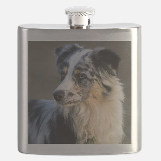 (15) aussie looking left Flask