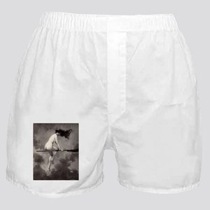 Victorian Risque Witch on Broomstick Boxer Shorts