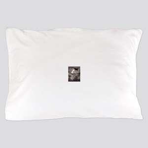 Victorian Risque Witch on Broomstick Pillow Case