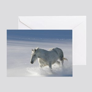 Kasey in snow Greeting Card